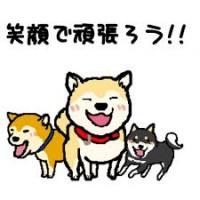 株式会社 松鶴 就労支援A型事業所の仕事イメージ